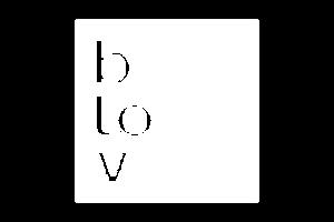 btov copy_2x Kopie.png