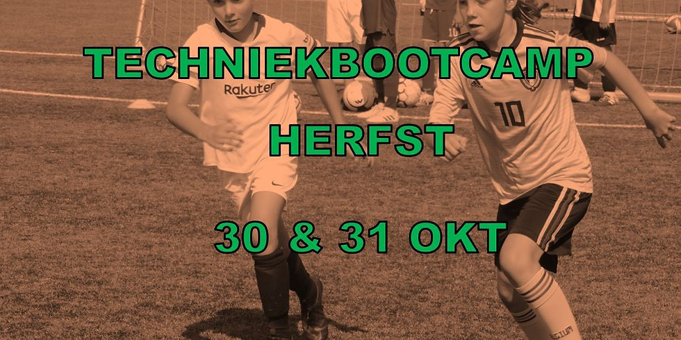HERFSTSTAGE 30 & 31 OKTOBER - TECHNIEKBOOTCAMP