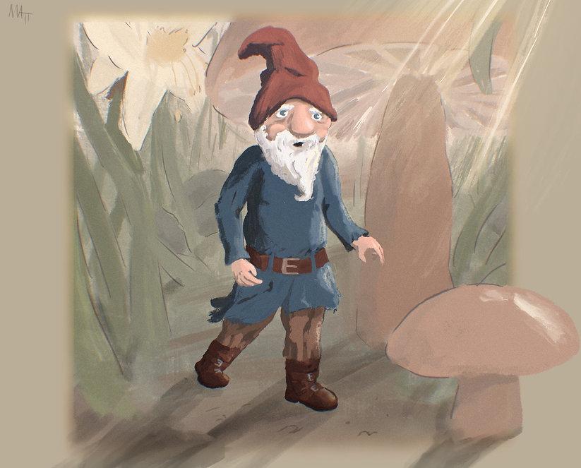 Gnome.jpeg