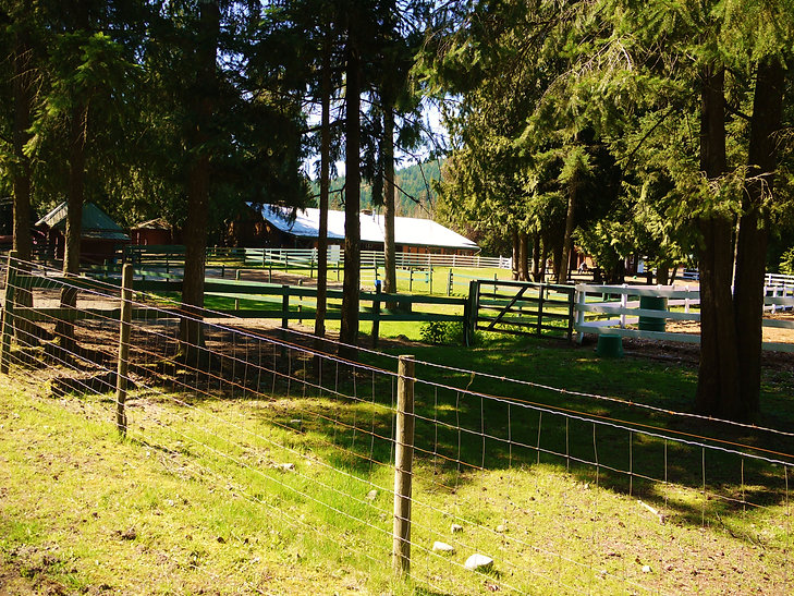 Alpine Stables, horseback riding