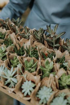 Doorgifts for a garden wedding