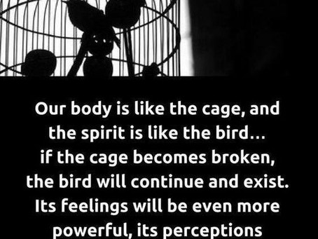 028. Our Body is Like the Cage.