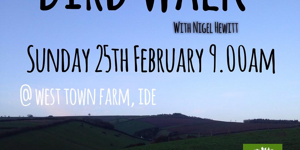 Bird Walk - Nigel Hewitt
