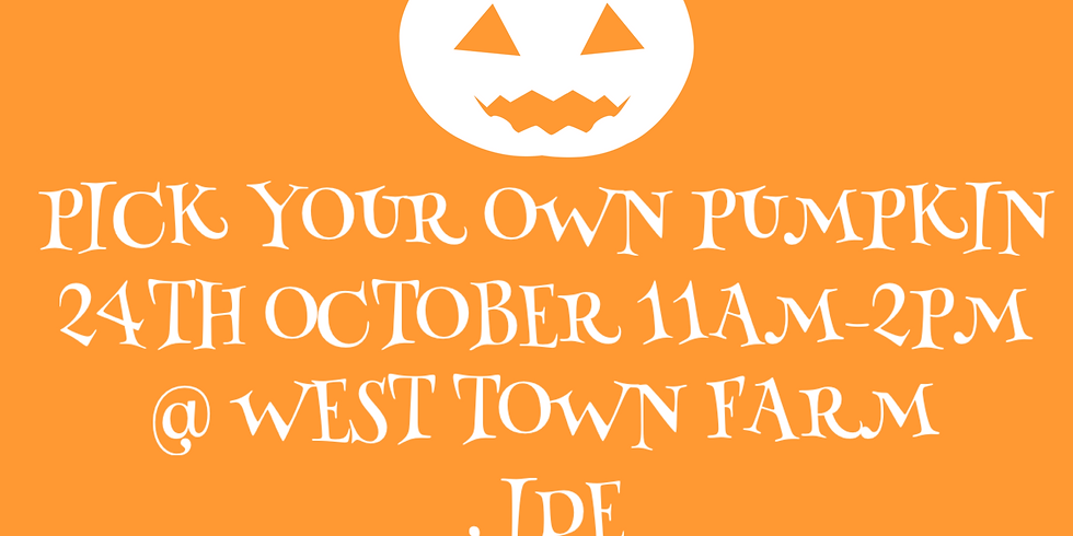 ****SOLD OUT!****Pick you own pumpkin!