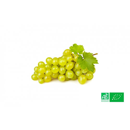 Raisin blanc bio prix au Kg
