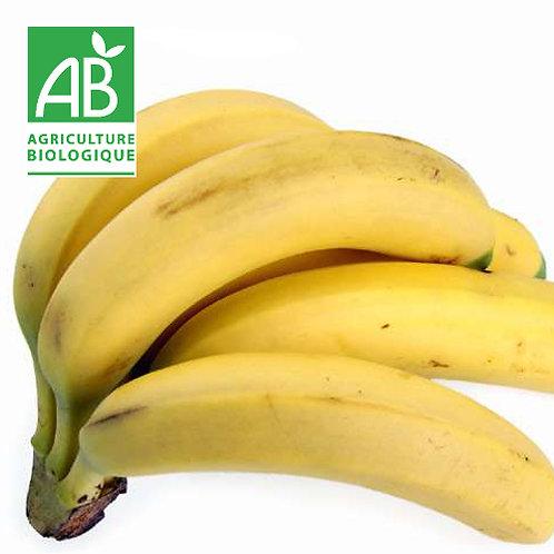 Banane bio prix au Kg