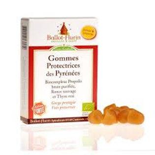 Gomme protectrices des Pyrénées