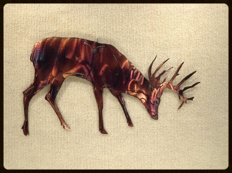 Grazing Single Deer