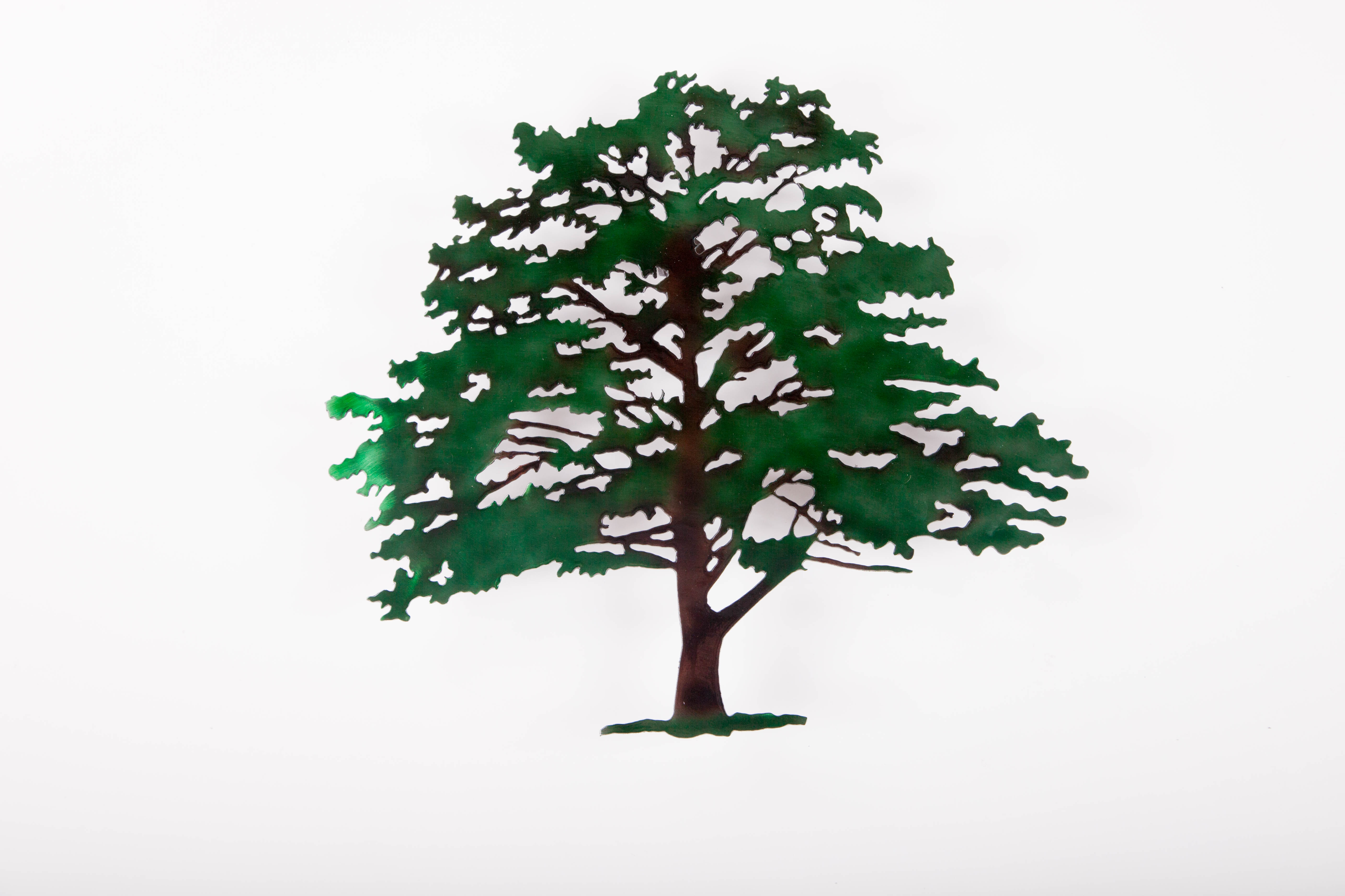 Shade Tree (C)