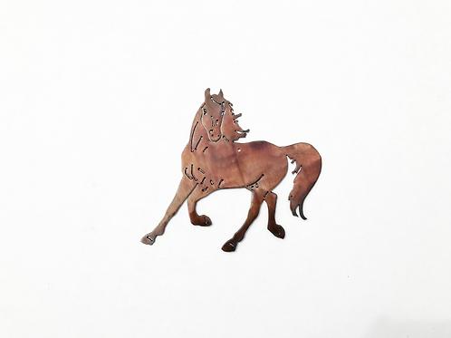 Accent Horse