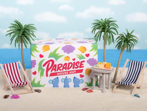 Paradise Mouse Hut, 2001