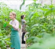 農業技能試験の最新情報