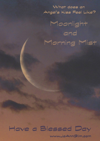 Morning Moonlight