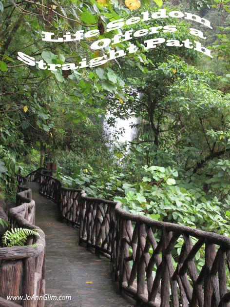 Jungle Path in Costa Rica