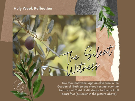 Holy Week Revelations