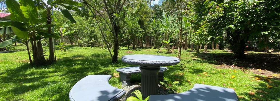 Tropical Garden .jpg