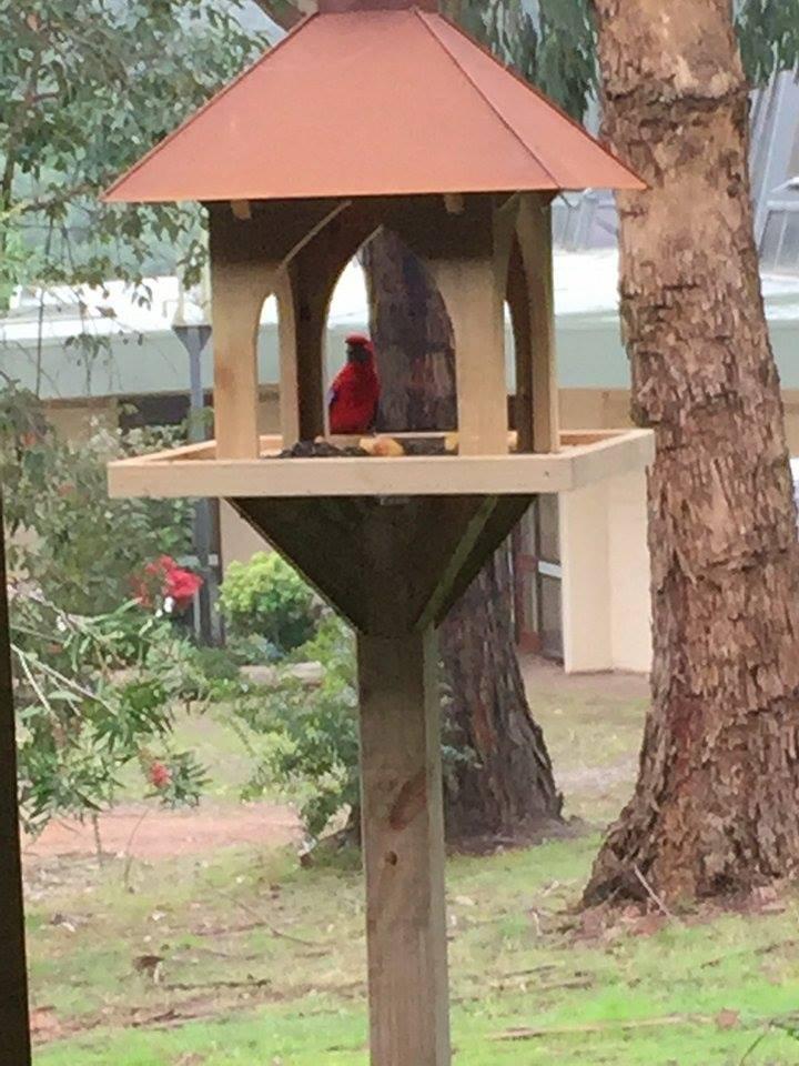 Rusty Pergola birdhouse
