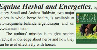 Exploring Herbal Options for Equine Health