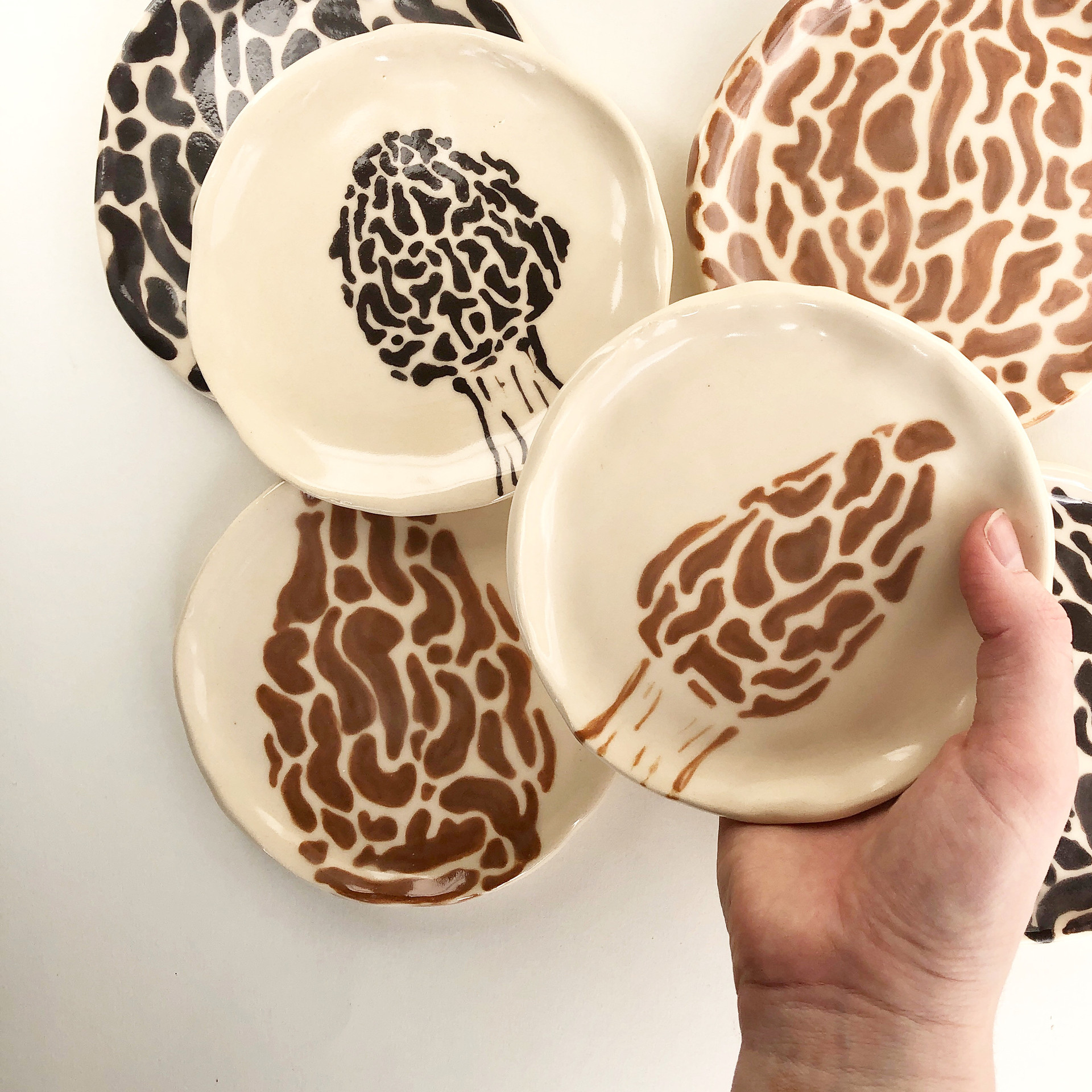 Morel Plates