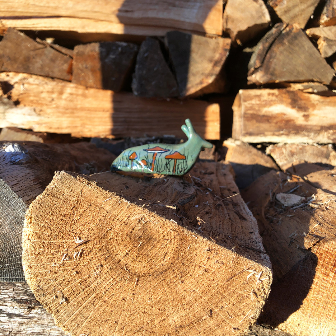 Green Slug Wood Background.jpg