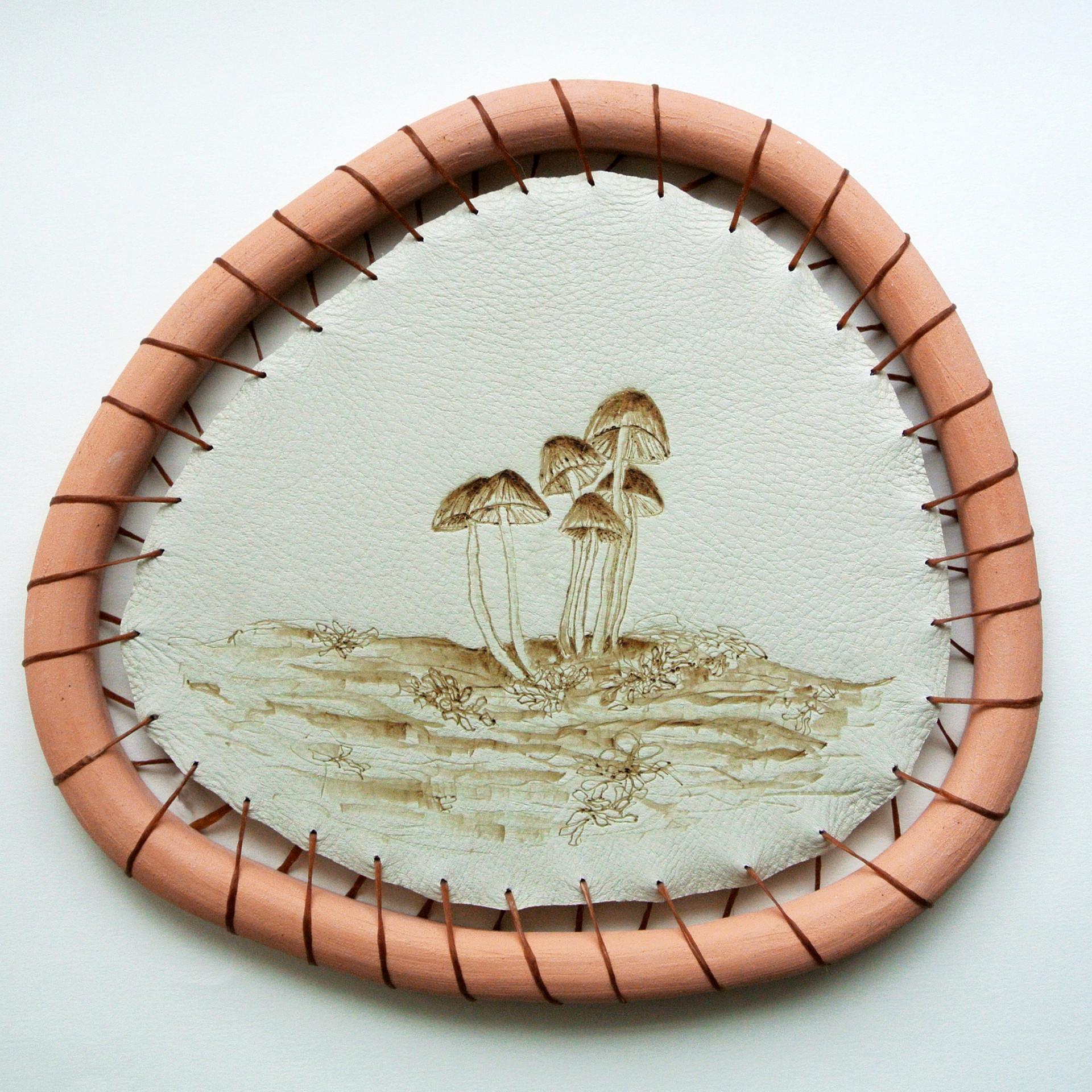 Mycena Mushroom.jpg