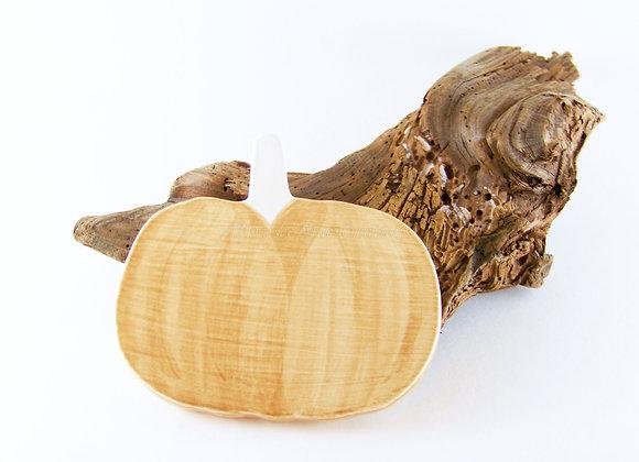 Washed Brown Pumpkin Coasters