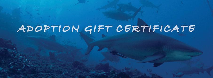 Gift Card  $50-$5,000