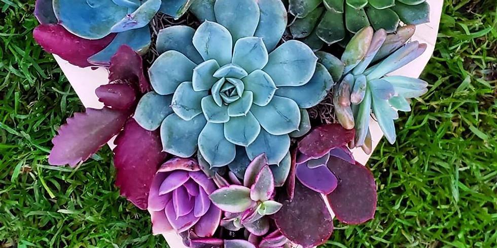 Succulent Heart Planter Workshop