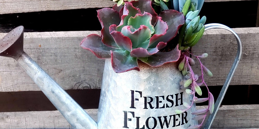 Succulent Watering Can