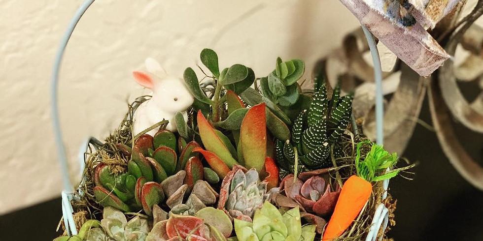 Sunday Succulents