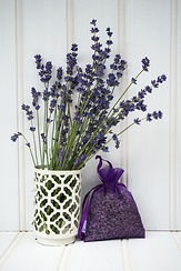 Beautiful lavender bunch in rustic home