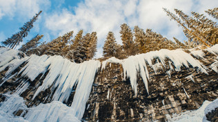 Banff Park, Alberta
