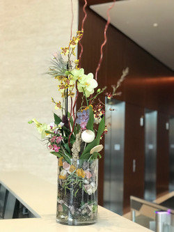 Orchid garden arrangement