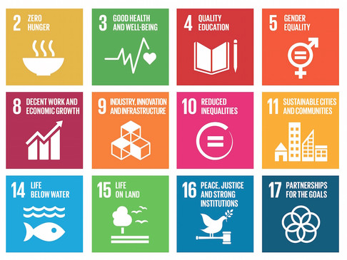 Cíle udržitelného rozvoje a co pro ně můžeme udělat