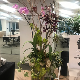Interior Flowers