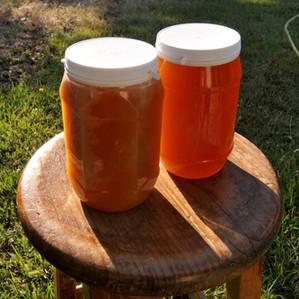 Мёд без пчел и ульи с дистанционным управлением