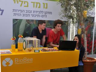 BioBee: как в израильском кибуце победили вредителей