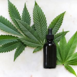 Умное орошение повысит качество медицинской марихуаны