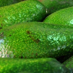 В Израиле цены на авокадо ниже, чем в Европе