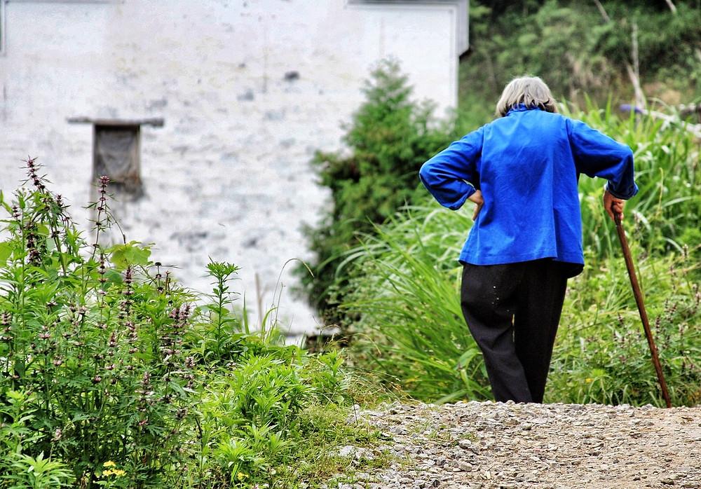 метапелет для пожилого человека, деменция, Ла-КОЛЬ компания по уходу