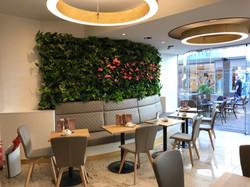 Café Wanders - Kleve