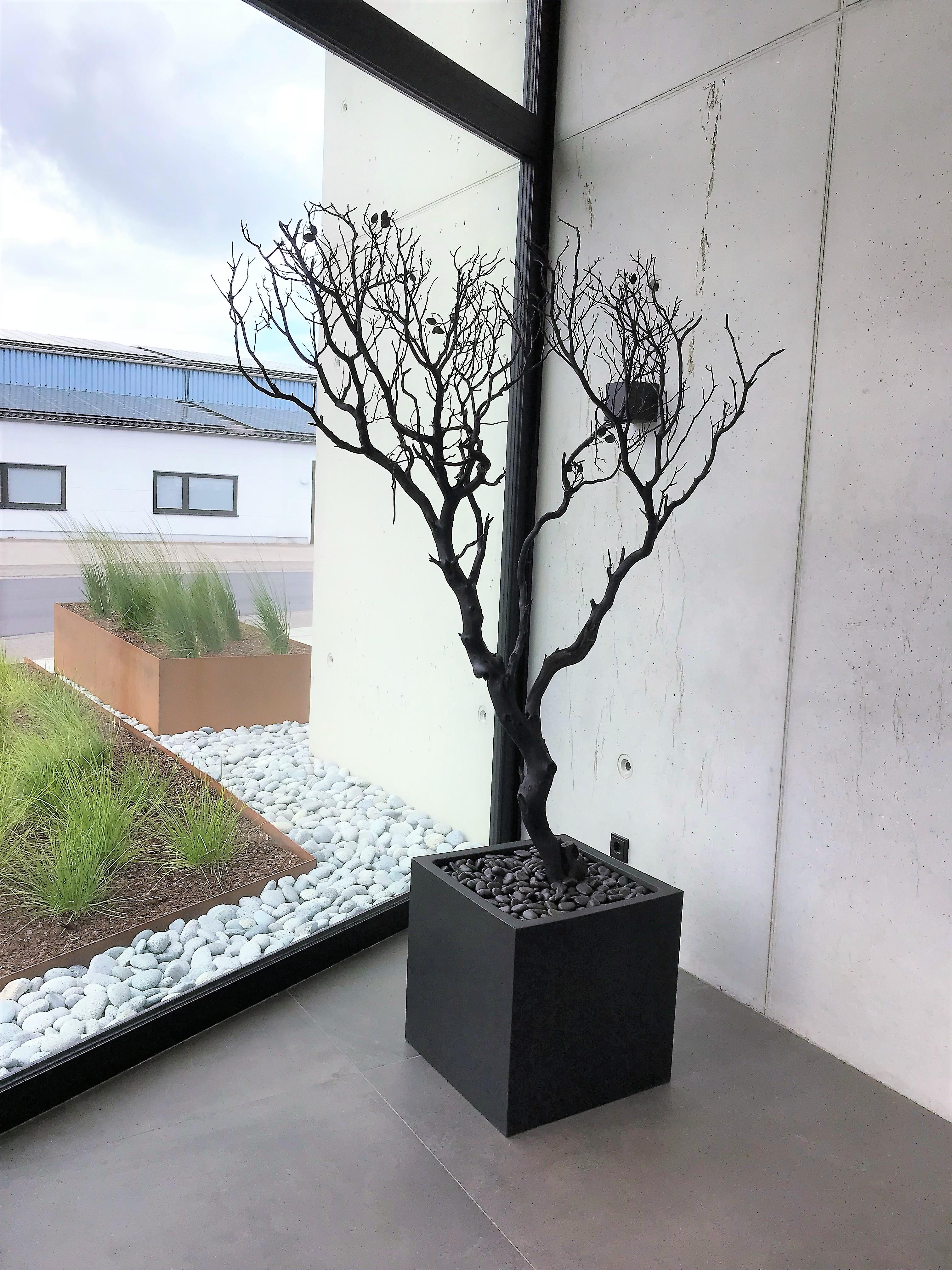 Neubau K3, Hasselt