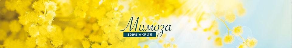 MimosaWix.jpg