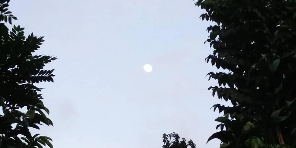 Moon Exploration Meditation