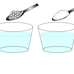 Curriculum Illustration