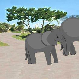 Elephant Still