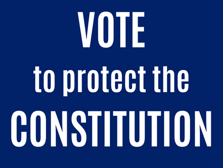 Vote to Protect the Constitution