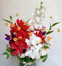 お祝い花 Celebration Flowers