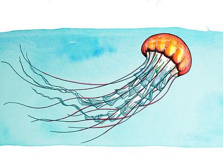 Barbara Miller LMT logo, Healing Arts, Healing arts SC, Helaing arts Irmo, Barbara Miller, Jellyfish