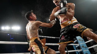 Puerto Rico Boxing Highlight